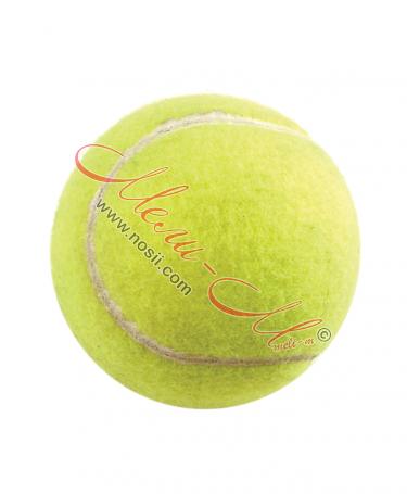 Топка за тенис